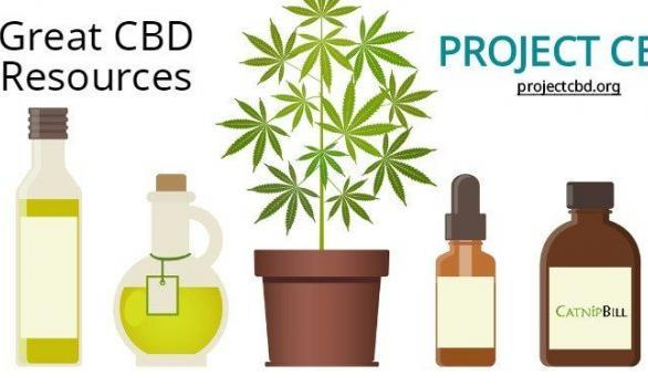 CBD Resource: Project CBD | Catnip Bill | catnipbill | Great CBD Resources