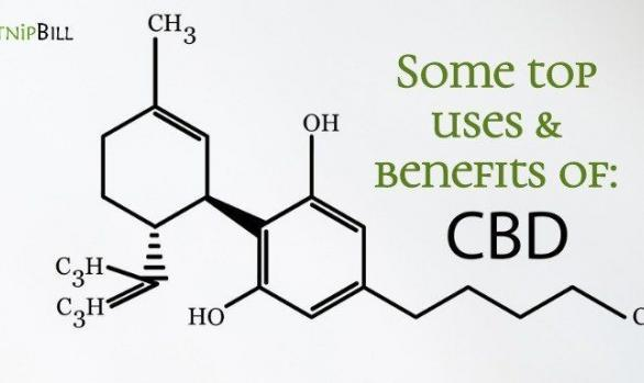 CBD industry Association offers top Uses & Benefits of CBD Oil