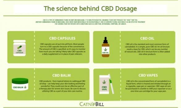 The Science behind CBD Dosage | Catnip Bill