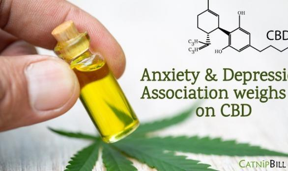 Does CBD Help with Anxiety and Depression? Catnip Bill