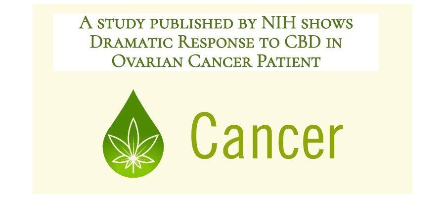 Dramatic Response to CBD in Ovarian Cancer Patient