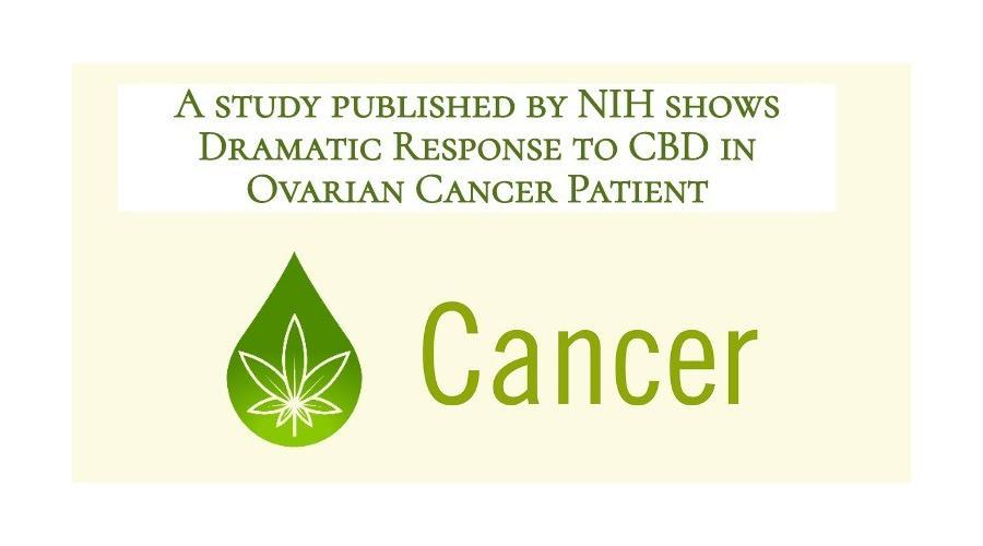 Dramatic Response to CBD in Ovarian Cancer Patient | Study published by NIH documents patient's CAM therapy for Low grade serous ovarian cancer (LGSOC)
