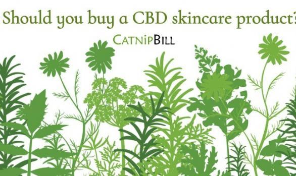 Should you buy a CBD skincare product?